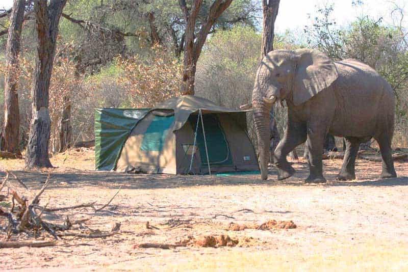 Botswana Vic Falls Highlights
