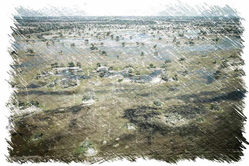 Okavando Sketch
