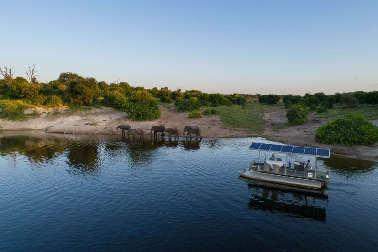 Chobe Game Lodge Gallery7
