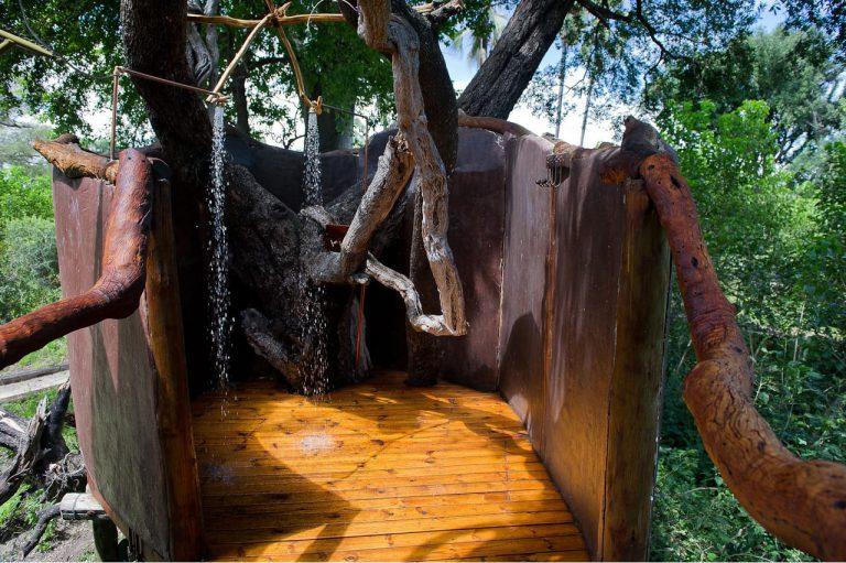 Tubu-Tree-Gallery26