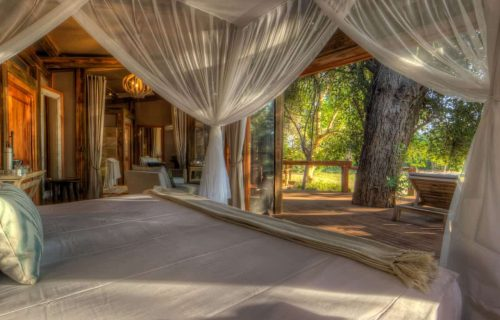 Camo Okavango Gallery24