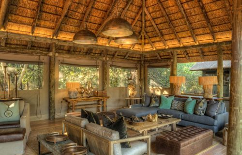 Camp Moremi Gallery11
