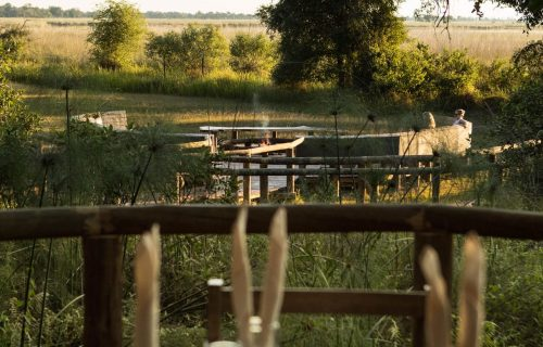 Camp Moremi Gallery20