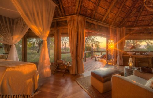 Camp Moremi Gallery28