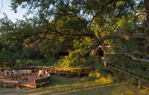 Camp Moremi Gallery7