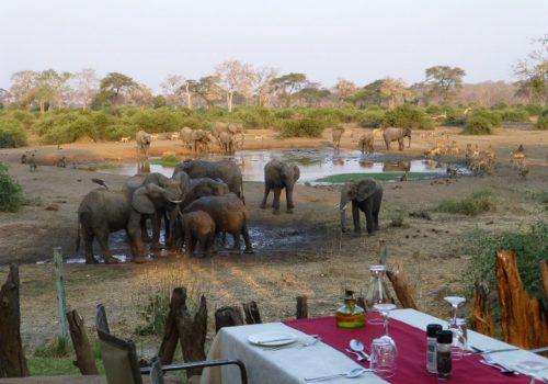 ElephantValleyLodgeGallery8