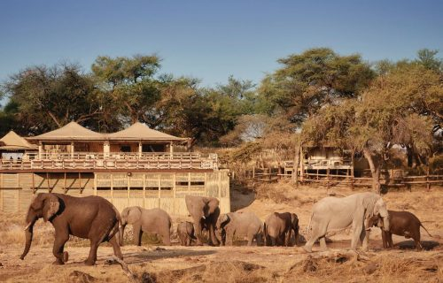 Savute Elephant Camp Gallery18