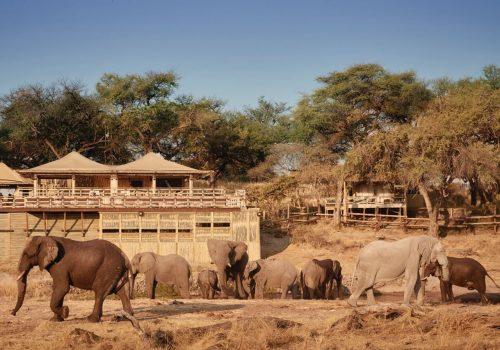 Savute Elephant Camp Gallery18