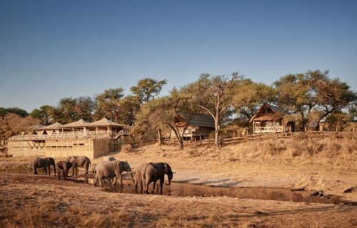 Savute Elephant Camp Gallery26