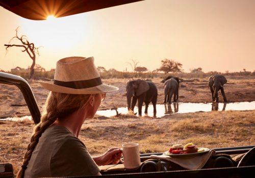 Savute Elephant Camp Gallery30