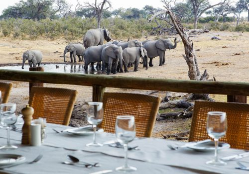 Savute-Safari-Lodge-Gallery17